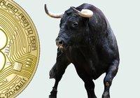 Bitcoin rusar förbi 10 000 dollar – har ökat sju procent det senaste dygnet