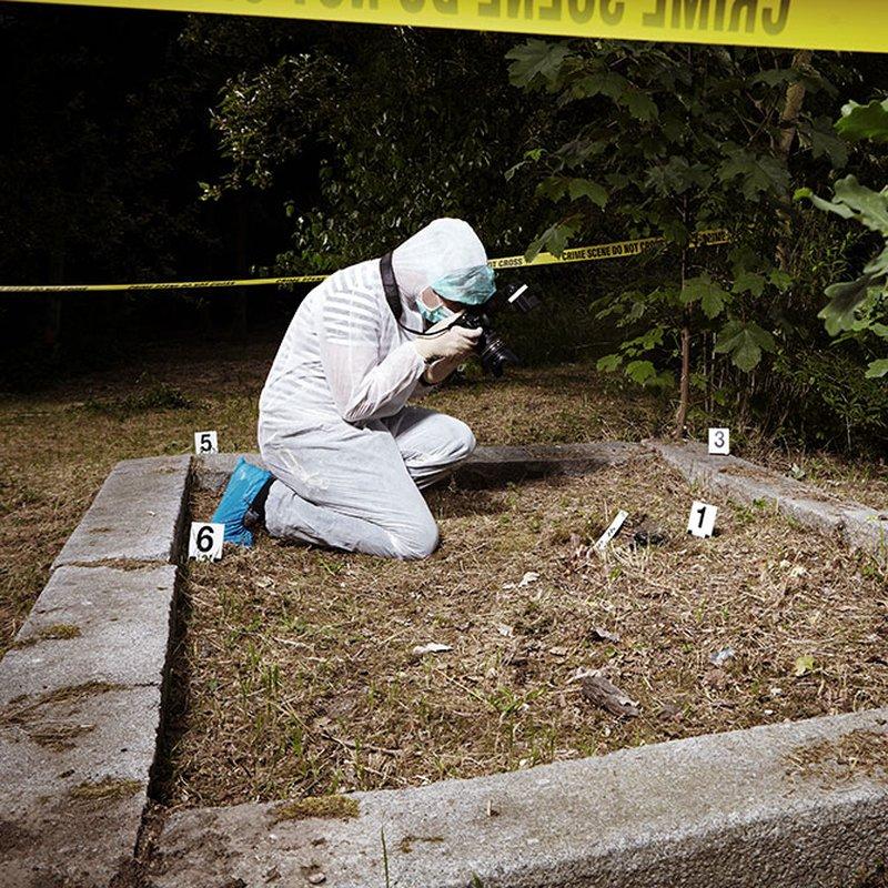 Mord, mörker och intriger – här är vårens mest spännande läsning