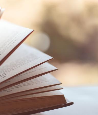 6 böcker för att stilla sinnet