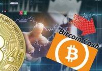 Kryptodygnet: Marknaderna går ner – bitcoin cash tappar mest av de största valutorna