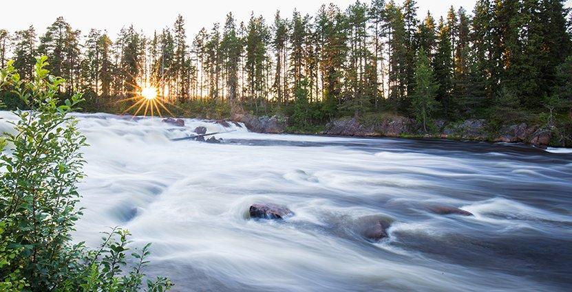 Besöksnäringen i Tornedalen oroas över EU:s beslut. Foto: Linnea Isaksson