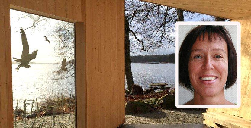 En av rastplatserna i Åsnens nationalpark har utsikt över sjön Åsnen och dess fågelliv. Foto: Sten-Åke Carlsson