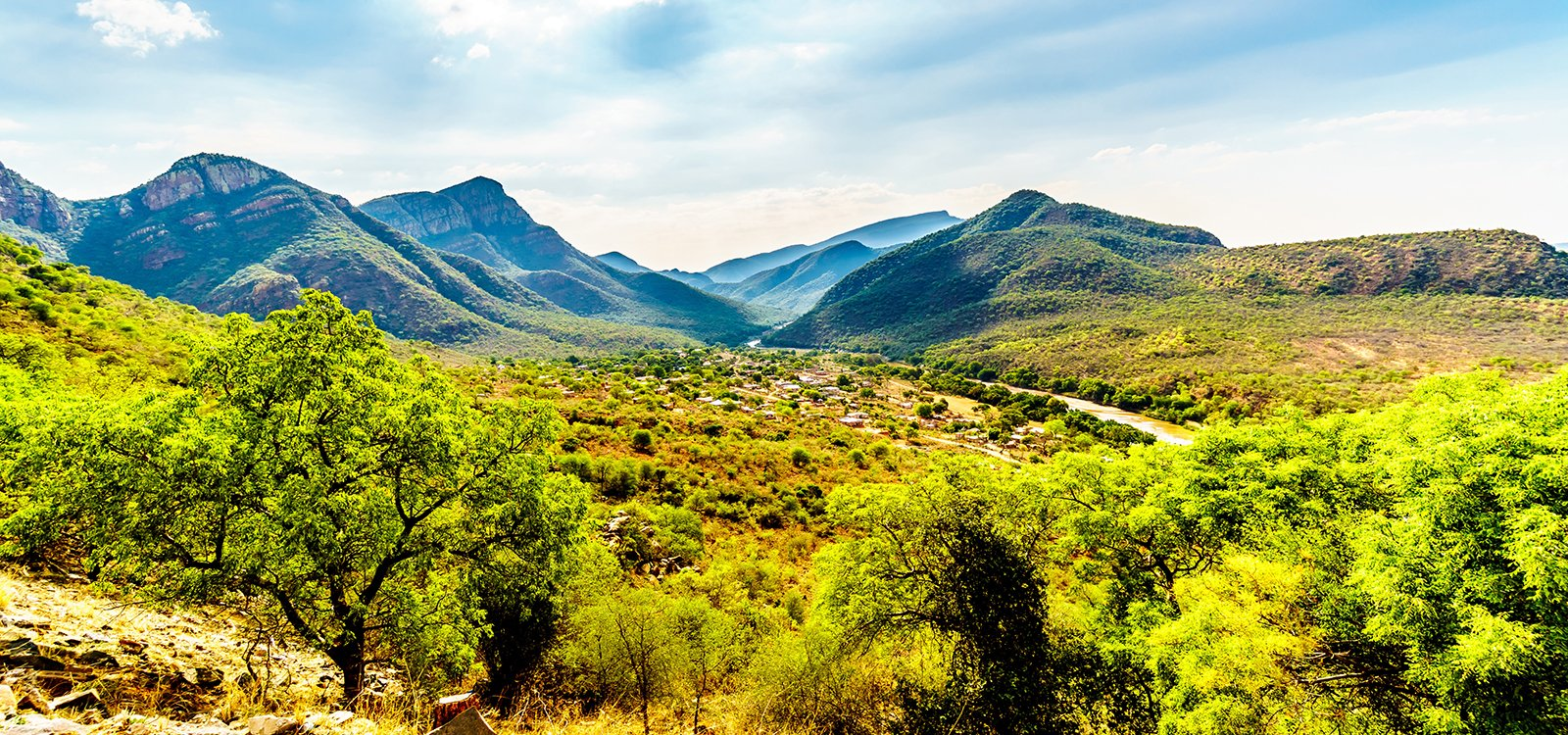 <p>Around two-thirds of Mpumalanga's land is used for agriculture, including natural grazing land and farming</p>