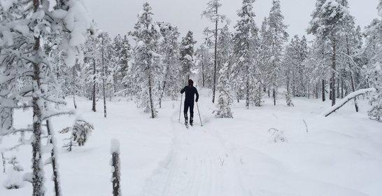 Norrlandspepp just nu