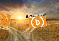 Daily crypto: Markets are rising and bitcoin cash divides itself