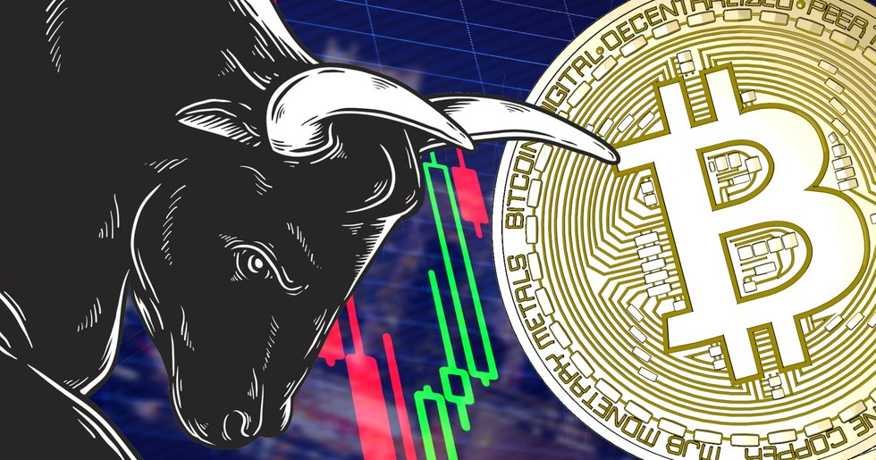 It seems like we are looking at an upcoming bull market in the world of crypto. Bitcoin cash and ripple are performing excellent right now
