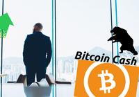 Kryptodygnet: Marknaderna visar små rörelser och Binance tänker lansera en egen blockkedja