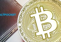 Bitcoin celebrities invest heavily in Swedish startup Altpocket