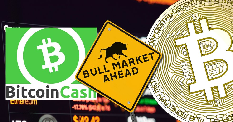 Most coins and tokens on the top 100 performed well the last 24 hours, which could be a sign of an upcoming bull market. Image source: Shutterstock/Bitcoin cash/Trijo News