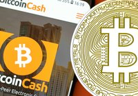 Stable markets - bitcoin cash up 2.5 percent