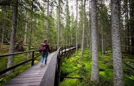 """""""Regeringens förslag slår mot naturturismen"""""""