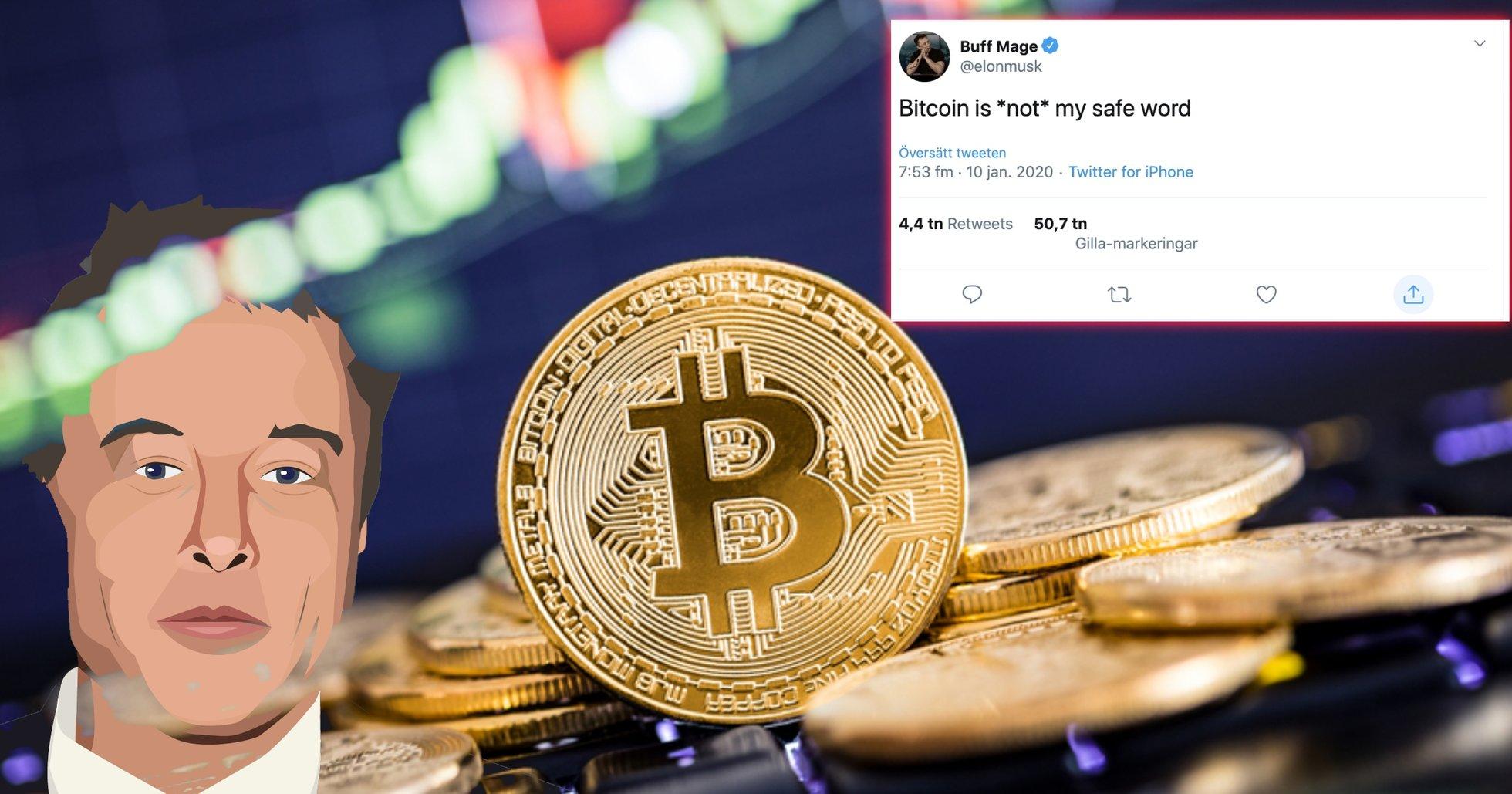 Tesla-grundaren Elon Musk skriver kryptisk sex-tweeet om bitcoin