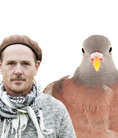 Våra närmaste fåglar som du aldrig mött dem förut