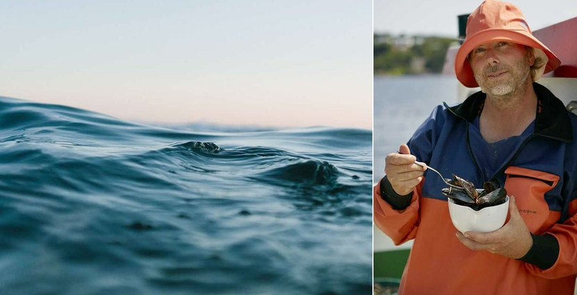 Janne Bark hyllar musslor.  Pressbild