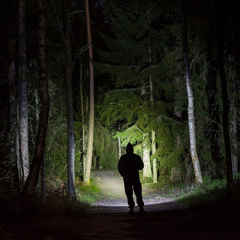 Det svenska deckarundret – 6 boktips av författarna bakom fenomenet