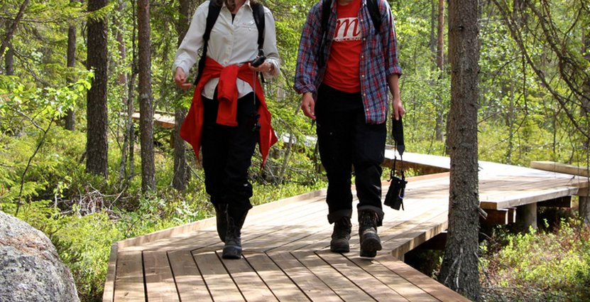 Nu hoppas parkens förvaltare att lokala företagare i Åsele och Södra Lappland hänger med på tåget och lockar till turism.