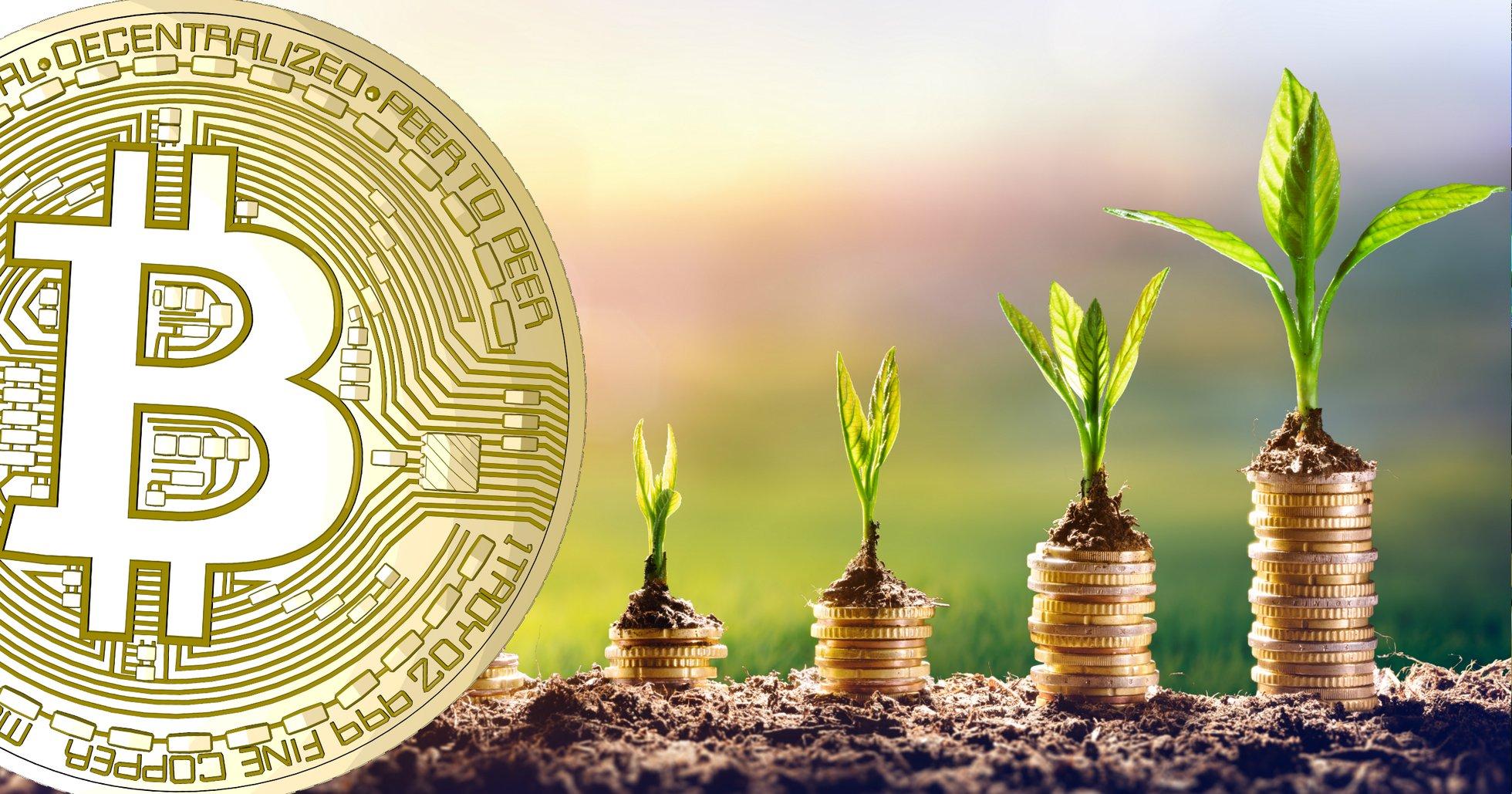 Vill du investera i bitcoin och kryptovalutor? Här är 5 saker du bör veta innan.