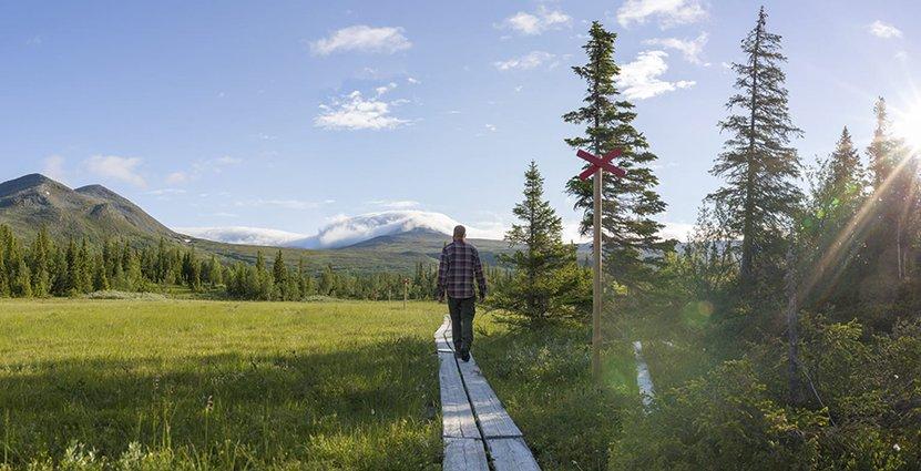 Region Västerbotten har beviljats miljonstöd från Europeiska regionalfonden.