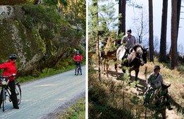 Buffertskogar ska ge fler besökare till nationalpark