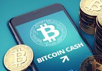 Calm crypto markets – bitcoin cash increases the most