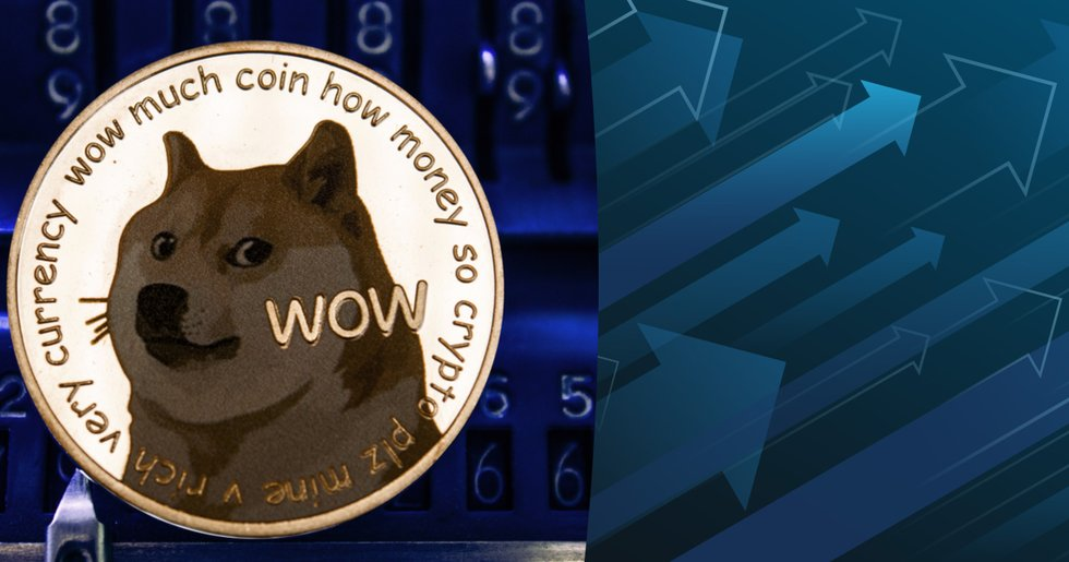 Dogecoin slår nytt prisrekord – efter kursrusning på 800 procent
