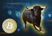 Bitcoin närmar sig 11 000 dollar – analytiker tror på tjurmarknad