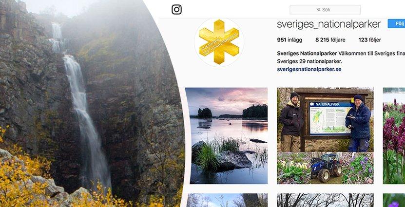 2,5 miljoner besök hade Sveriges 29 nationalparker under 2017. Foto: Sveriges Nationalparker