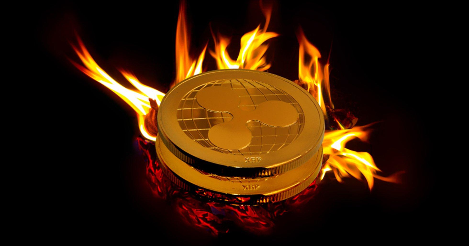 Därför bränner kryptoföretag sina pengar genom