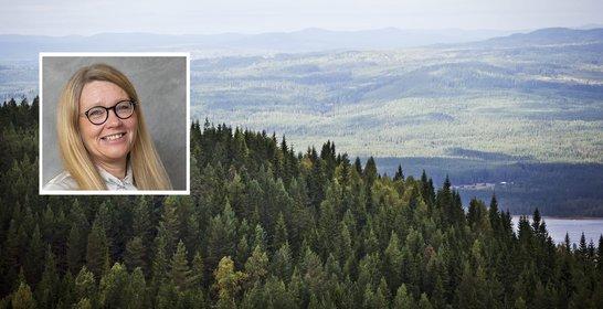 Visit Värmland lanserar ny besöksnäringswebb