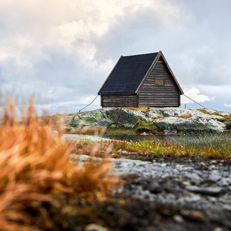 Djupa skogar och iskalla fjäll- böcker som utspelar sig i Jämtland