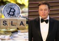 Elon Musk: Världens regeringar borde lämna kryptomarknaden i fred