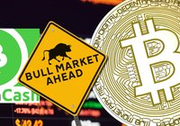 Daily crypto: Good time to buy according to Pantera and strong growth for bitcoin cash