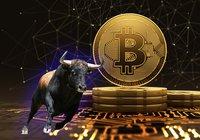 Bitcoin rusar över 12 000 dollar: Kan nå nya rekordnivåer inom kort