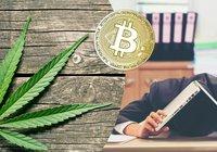 Knarklangare förlorade nycklar till bitcoinförmögenhet värd 55 miljoner kronor