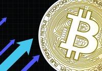 Bitcoinpriset har ökat över 450 dollar på ett dygn