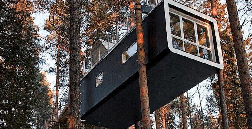 Kändisarnas favorithotell, Treehotel i Haralds, <br /> planeras att säljas inom en tvåårsperiod. Foto: Treehotel