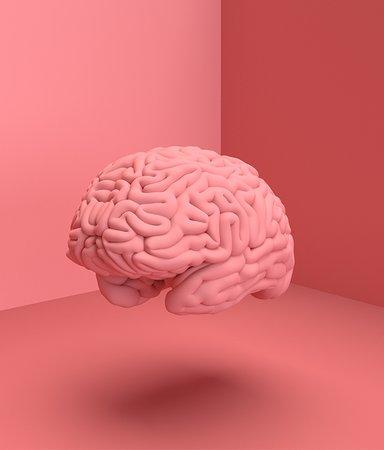 7 intressanta boktips som lär dig mer om hjärnan
