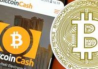 Stabila marknader –bitcoin cash ökar 2,5 procent