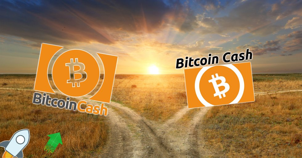 Daily crypto: Markets are rising and bitcoin cash divides itself.