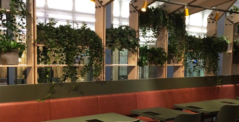 Balans och hälsa präglar nya restaurangen.
