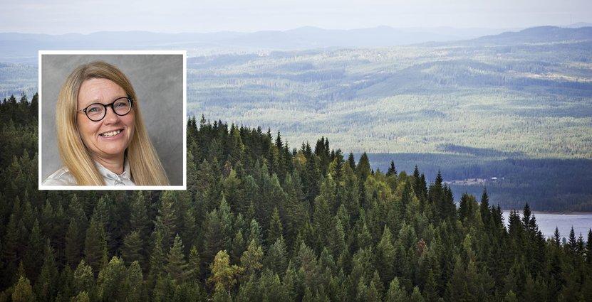 Mia Landin, vd Visit Värmland. Foto: Pressbild
