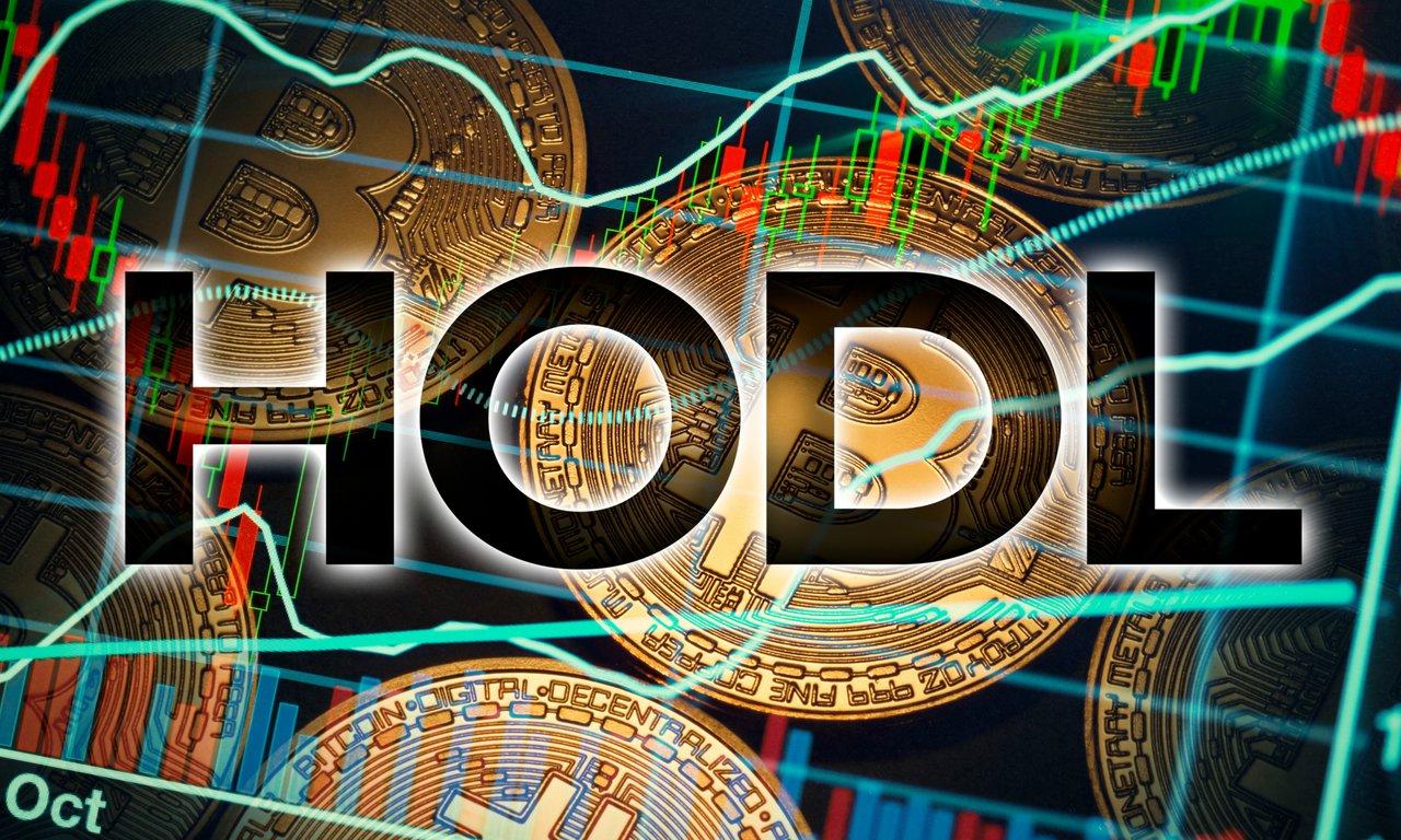 Hodl dina bitcoins är en investeringsstrategi