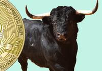 Bitcoinpriset över 5 500 dollar – högsta nivån på fem månader