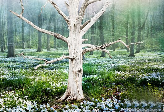Vårens ljudböcker