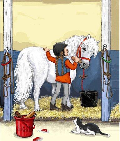 Ny på hästryggen? 4 enkla tips för nybörjarryttaren