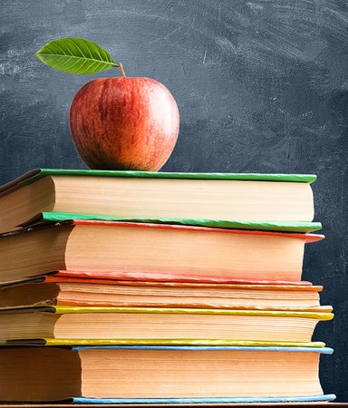 10 klassiker man fick läsa i skolan