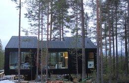 Unika trädhotellet växer – bygger nytt lyxrum