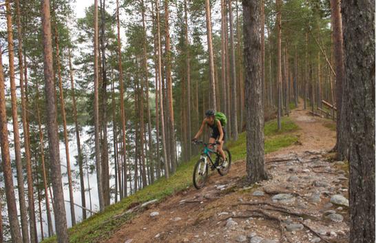 Framgång för Visit Umeås besöksnäringsprojekt