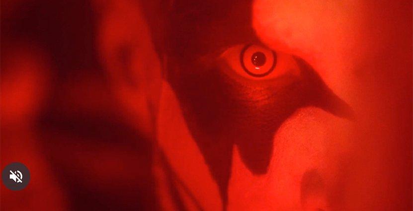 Foto: Klipp från Lisebergs film