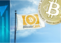 Daily crypto: Bitcoin cash rallies and bitcoin is over $4,000 again